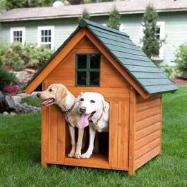 cuccia-cani-esterno-3