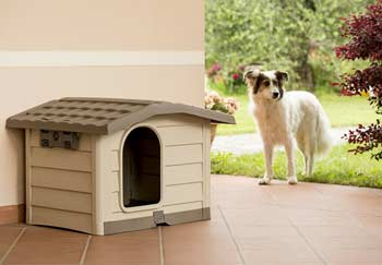 cuccia cani esterno bungalow