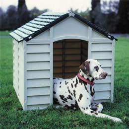 cuccia-cani-esterno-economica