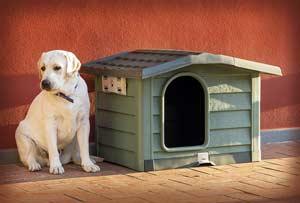 cuccia-cani-esterno-plastica