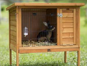 gabbia conigli 2