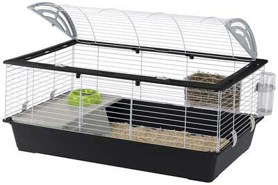 gabbia conigli migliore interni