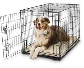 gabbia per cani 2