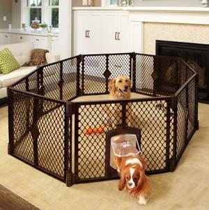gabbia per cani-4