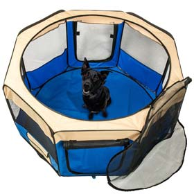 gabbia per cani tela 5