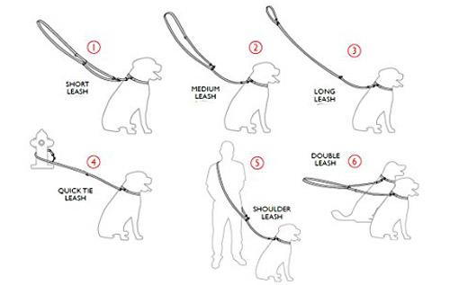 guinzaglio per cani addestramento