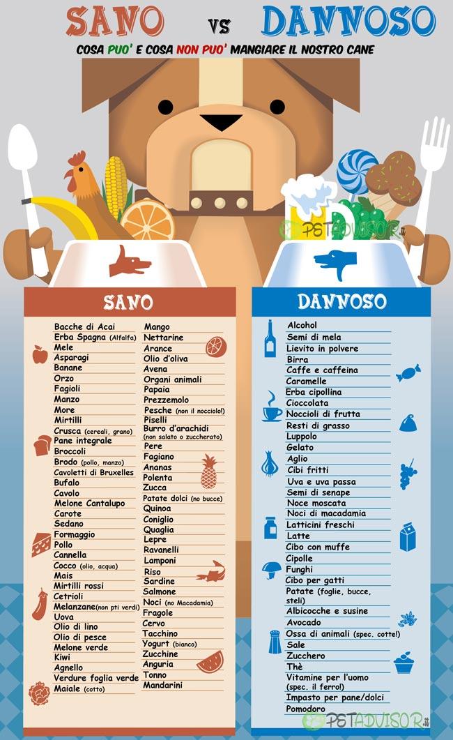 cibo cani sano-vs-tossico