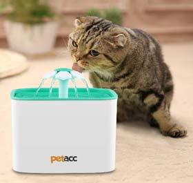 fontanella gatti petacc