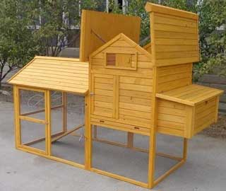 pollaio galline legno