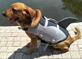 giubbotto salvataggio cani squalo Vohoney